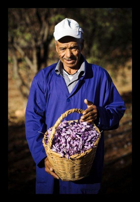 Công dụng của nhụy hoa nghệ tây đối với đàn ông