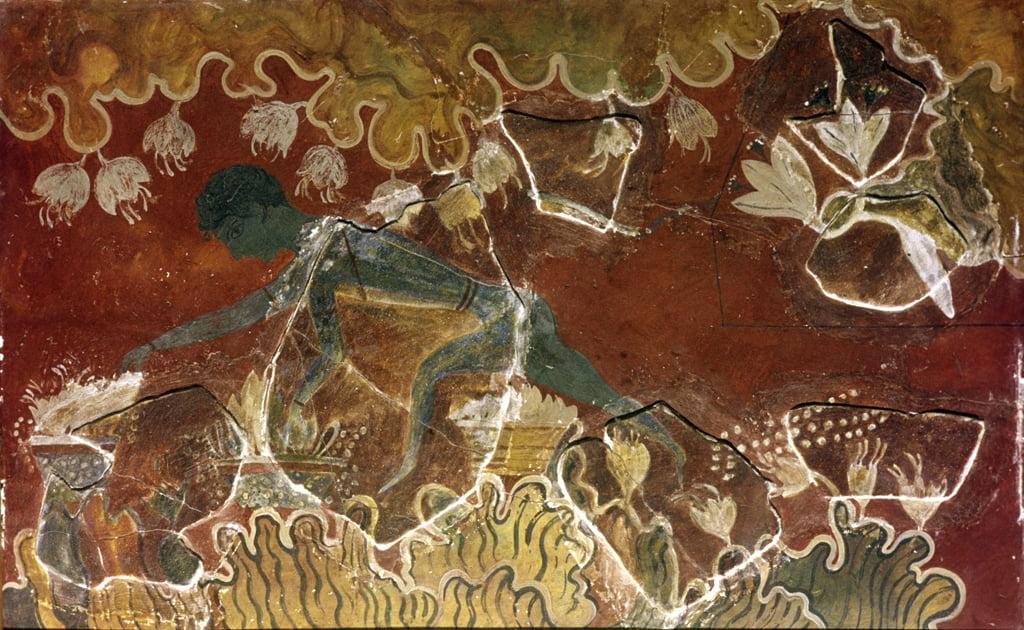 Bức bích họa Minoan - Saffron Gatherer. Cung điện Hoàng gia tại Knossos, Crete, thế kỷ thứ 15 trước Công nguyên